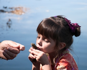 Kiss the fish-1