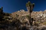 short-canyon-4